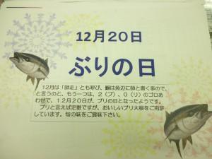 P1050446